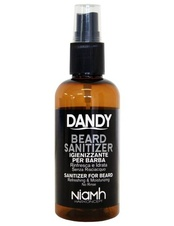 Dandy Sanitizer 100ml